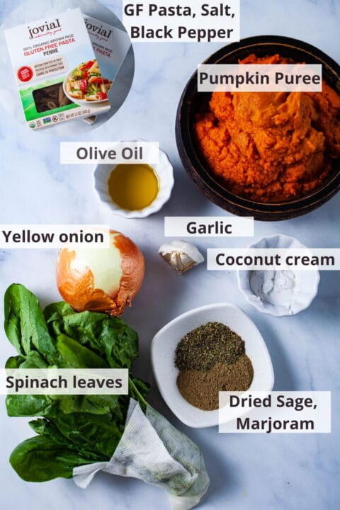 Ingredients like pasta, salt, pepper, pumpkin puree, olive oil, garlic, coconut cream, yellow onion, spinach leaves, dried sage, marjoram displayed on a white background.