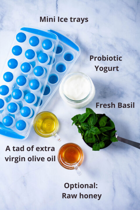 Mini trays, and ingredients such as probiotic yogurt, fresh basil, olive oil, and raw honey displayed on a board.