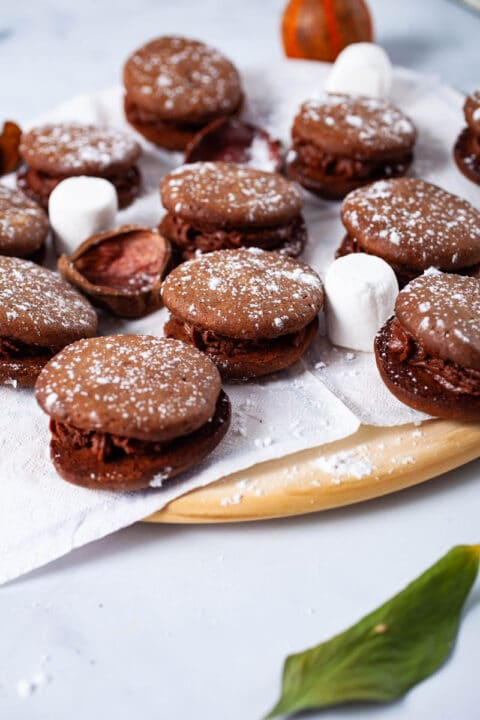 A plate filled with chocolate mascarpone cookies and decorated with white powder sugar.