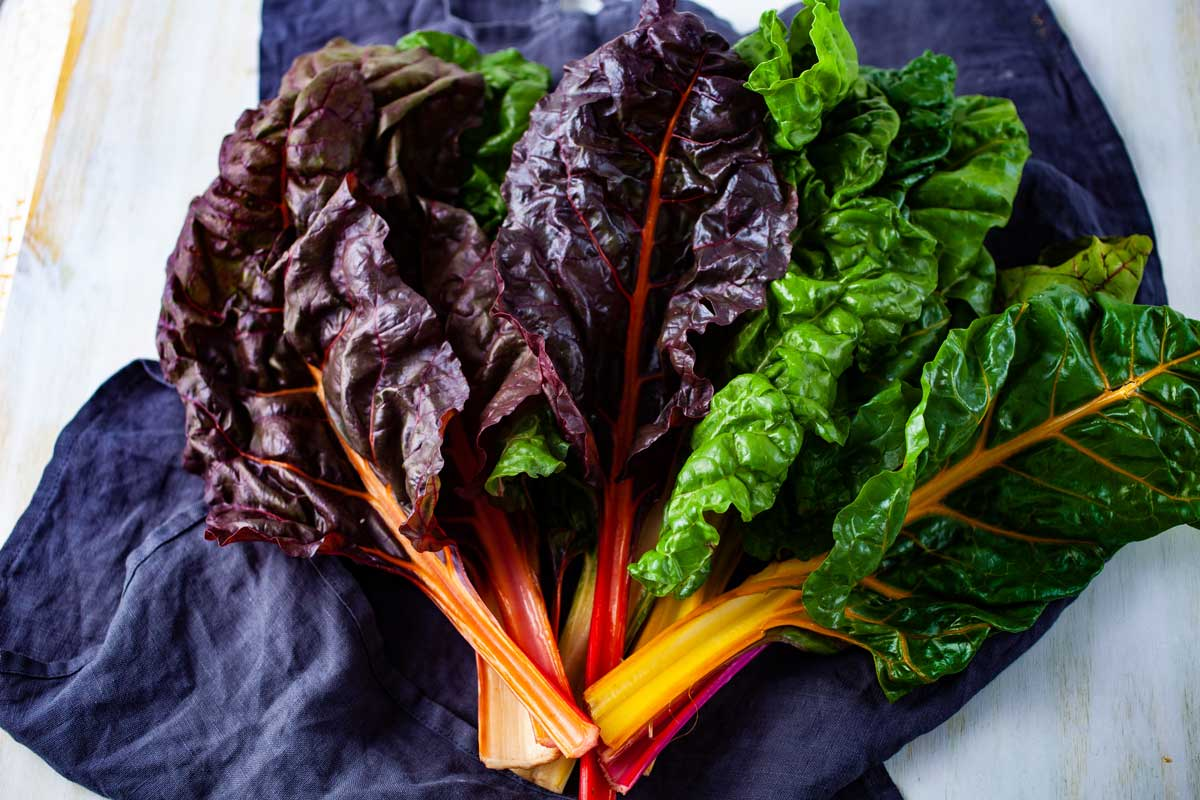 Beautiful rainbow chard or Swiss Chard washed and spread out over a towel
